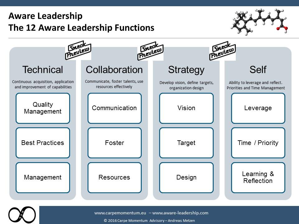 12 Functions of Aware Leadership